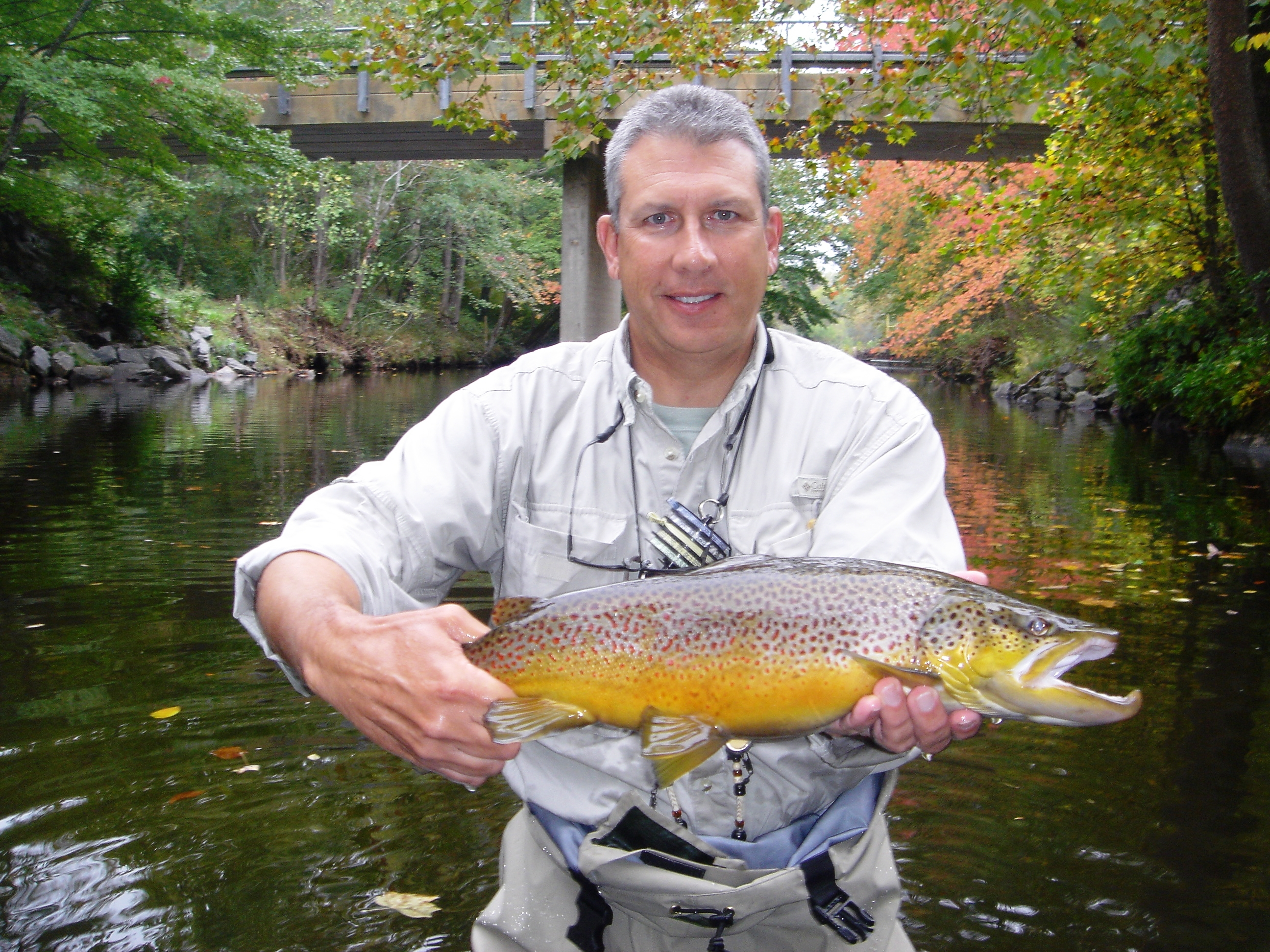Western north carolina fly fishing brevard offers river for River trout fishing